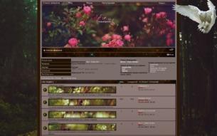 Скриншот сайта Rollafir
