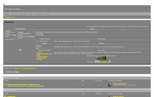 Скриншот сайта Night Races