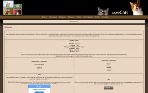Скриншот сайта Коты-воители. Под звёздным небом