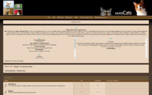 Скриншот сайта Коты-воители. Загадка леса