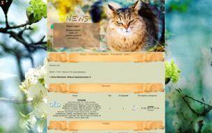 Коты-воители. Новые приключения 2