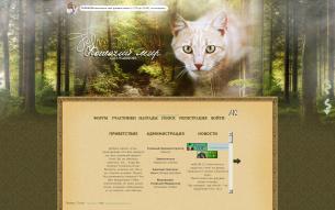 Коты-воители. Кошачий мир