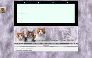 Скриншот сайта Коты-воители: неуловимая троица