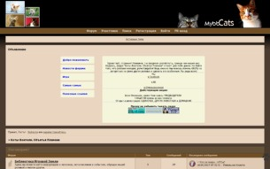 Скриншот сайта Коты-воители. Объятья пламени