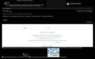 Скриншот сайта Сумеречный дозор