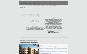 Скриншот сайта Seattle grace hospital